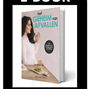 E-Book Het geheim van Afvallen